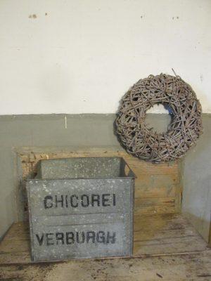 oude-zinken-krat-chicorei