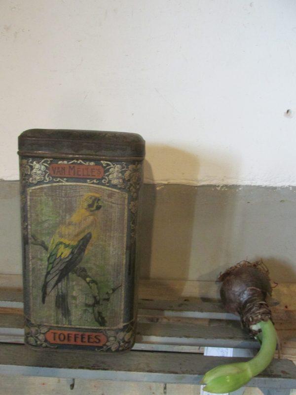 Oud winkelblik van Melle met de rode papegaai