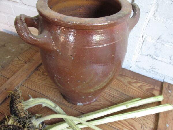 Oude bruine grespot